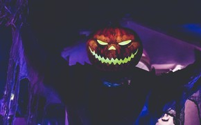 Picture Halloween, guy, Jack