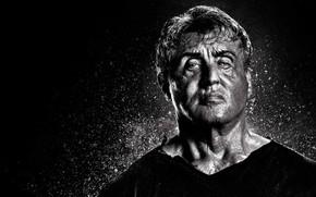 Picture Movie, Sylvester Stallone, Rambo, John Rambo, Rambo 5