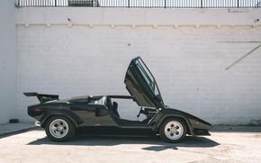 Picture Black, Lamborghini Countach, Sportcar, Side view