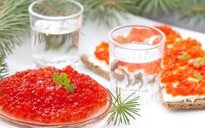 Picture table, glasses, vodka, needles, red, caviar, bokeh, sandwiches, appetizer