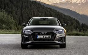Picture Audi, before, sedan, Audi A4, 2019
