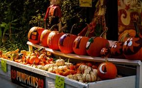 Picture autumn, decoration, holiday, drawings, pumpkin, Halloween, market, Halloween, Bazaar, shelves, fair, selling