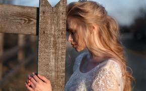 Picture girl, portrait, the bride, wedding