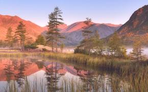 Wallpaper mountains, reflection, shore, morning, pine, pond