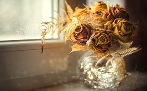 Picture light, flowers, roses, bouquet, yellow, dry, window, dry, vase, sill, buds, fern, bokeh
