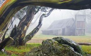 Picture fog, house, stone, Australia, Wallace Hut