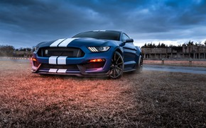 Picture Mustang, Ford, Shelby, GT500