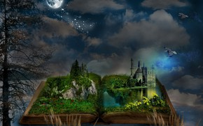 Picture birds, night, castle, the moon, book