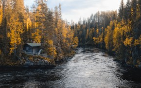 Picture autumn, forest, house, river
