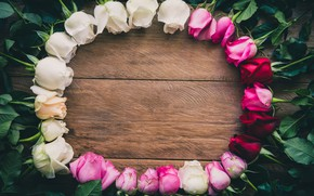 Picture flowers, roses, frame, white, wood, pink, flowers, romantic, roses, frame
