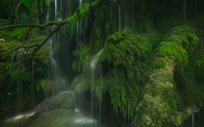 Picture France, waterfall, moss