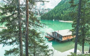 Picture forest, shore, pond, Dolomites, THE THREE PEAKS OF LAVAREDO