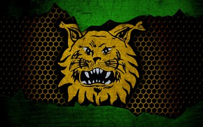 Picture wallpaper, sport, logo, football, Ilves