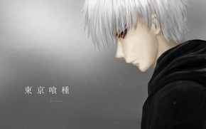 Picture guy, white hair, Tokyo Ghoul, Tokyo Ghoul, The Kaneko Ken
