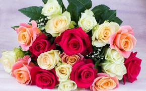 Picture flowers, roses, Bouquet, colorful