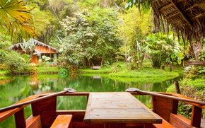 Picture greens, grass, trees, tropics, pond, Park, house, the bushes, table, benches