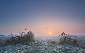 Picture frost, field, the plane, The sun, windmills, field, Sun, plane, hoarfrost, windmills, Anna Zuidema