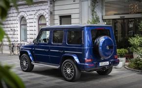 Picture blue, Mercedes-Benz, SUV, entrance, G-Class, 2019