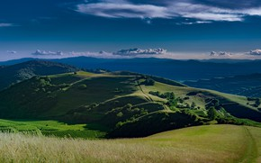 Picture road, greens, field, summer, the sky, grass, clouds, light, trees, landscape, mountains, blue, hills, view, …
