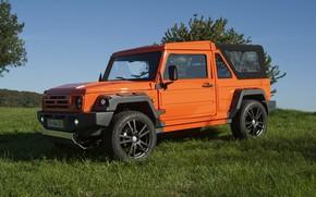 Picture grass, trees, orange, SUV, 2011, 4x4, Travec, Tecdrah Integrale 1.5 TTi, Renault/Dacia Duster, frame