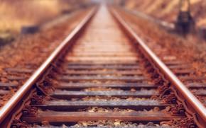Picture The way, Rails, Sleepers, Steel, Railway, Blur, Iron, Rails, Close-Up, Train Rail, by Johannes Plenio, …