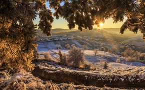 Picture winter, the sun, rays, snow, trees, landscape, mountains, branches, nature, home, valley, village, needles, pine, …