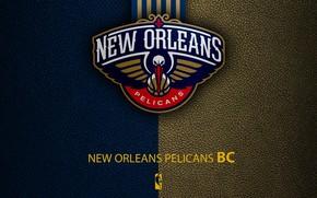 Picture wallpaper, sport, logo, basketball, NBA, New Orleans Pelicans