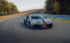 Picture Bugatti, on the track, Chiron, 2020, Chiron Pur Sport