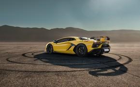 Picture Lamborghini, supercar, Aventador, SVJ, 2019, Aventador SVJ