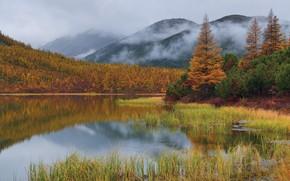 Picture autumn, grass, clouds, trees, landscape, mountains, nature, fog, lake, the bushes, Kolyma, Maxim Evdokimov