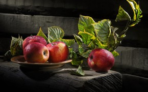 Picture leaves, apples, Board, branch, plate, fruit, Sergey Pounder