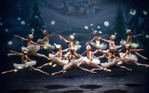 Picture dance, ballet, The Nutcracker