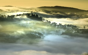 Picture forest, clouds, mountains, fog, morning