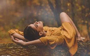 Picture autumn, girl, nature, pose, Park, mood, model, dress, bokeh, Lovagi Milаn