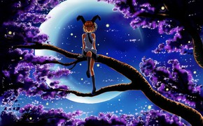 Picture night, the moon, branch, girl