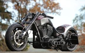 Picture Harley Davidson, Harley-Davidson, Motorbike, Dragster, RS-R, Thunderbike, By Thunderbike