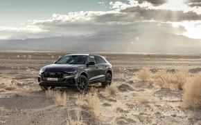 Wallpaper Quattro, 2018, crossover, S-Line, 55 TFSI, Audi Q8