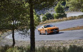 Picture trees, orange, Ford, turn, 2018, fastback, Mustang GT 5.0