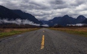 Picture road, mountains, fog