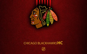 Picture wallpaper, sport, logo, NHL, hockey, Chicago Blackhawks
