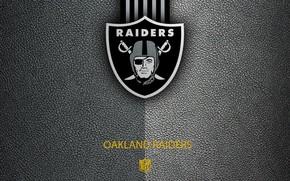 Picture wallpaper, sport, logo, NFL, Oakland Raiders