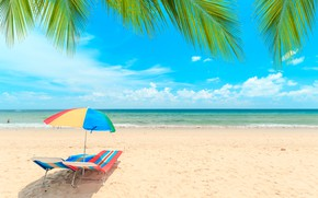 Picture sand, sea, wave, beach, summer, the sky, palm trees, shore, chaise, summer, beach, sea, seascape, ...
