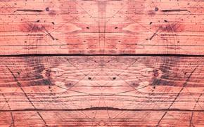 Picture line, tree, geometry