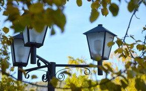 Picture autumn, leaves, lantern