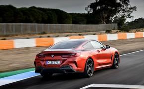Picture asphalt, movement, coupe, BMW, Coupe, 2018, 8-Series, dark orange, M850i xDrive, Eight, G15