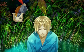 Picture cat, anime, art, youkai, Natsume, Book Of Friends Natsume