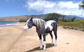 Picture sand, sea, beach, the sky, look, clouds, mountains, nature, rendering, tree, horse, shore, horse, pond, …