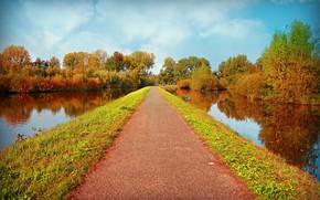 Picture road, autumn, the sun, river