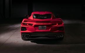 Picture Corvette, Chevrolet, Lights, Stingray, Sports car, 2020, Chevrolet Corvette ( C8 ) Stingray