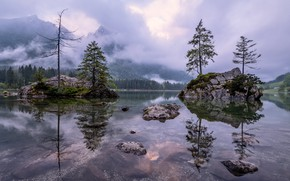 Picture water, mountains, fog, lake, tree, Forest